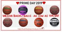 Wilson Basketballs - Huge Selection - Starting at $14.99!